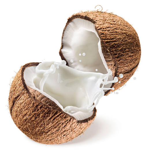 picture of coconuts and coconut milk